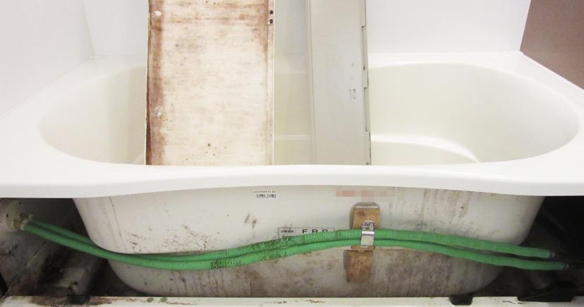 カビだらけ。浴槽内に立てかけているのはエプロンの内側