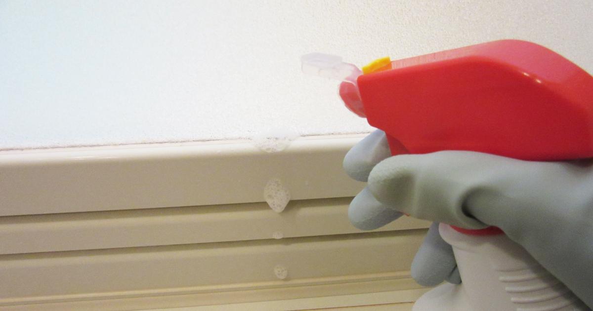ドアのゴムパッキンにカビ取り剤をスプレーしている