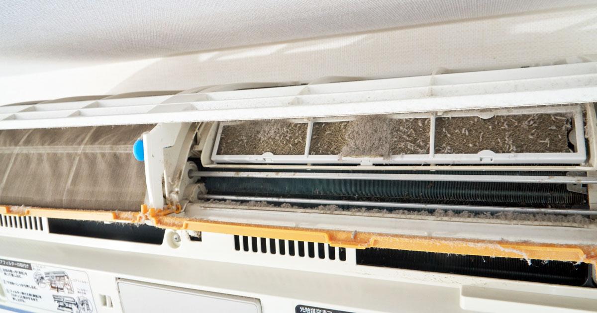 お掃除エアコンの内部フィルターを外したところ