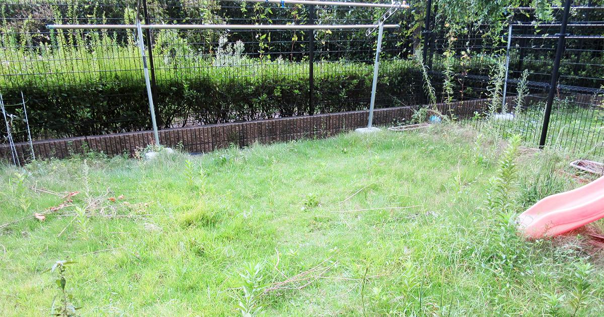 草が茂った庭